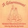 Couverture de l'album A Gitarrenmusi - Alpenländische Volksmusik für zwei und drei Gitarren