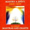 Cover of the album Mantras & Chants: Gopala Gopala