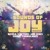 Couverture de l'album Sounds of Joy Riddim - EP