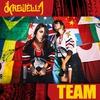 Couverture de l'album Team - Single