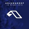 Cover of the album Anjunadeep In Miami 2018