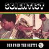 Couverture de l'album Dub From the Ghetto