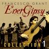 Couverture de l'album Energipsy Collection 1
