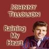 Couverture de l'album Raining In My Heart