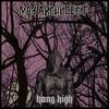 Couverture de l'album Hang High