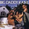 Couverture de l'album It's a Big Daddy Thing
