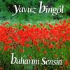 Couverture de l'album Baharım Sensin