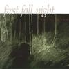 Couverture de l'album First Fall Night