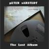 Couverture de l'album The Lost Album