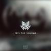 Couverture de l'album Feel the Volume - Single