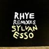 Couverture de l'album Die Young (Rhye Remix) - Single