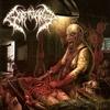 Couverture de l'album Manic Thoughts of Perverse Mutilation