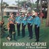 Couverture de l'album Peppino Di Capri e i suoi rockers