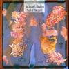Couverture de l'album Flash of the Spirit