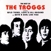 Couverture de l'album The Best of the Troggs