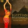 Couverture de l'album Egyptian Bellydance