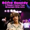 Couverture de l'album I Think I Love You - Greatest Hits Live