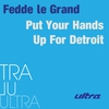 Couverture de l'album Put Your Hands Up for Detroit