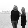 Cover of the album Raising Sand