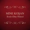 Couverture de l'album Yesin Onu Ninesi