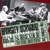 Couverture de l'album Surrender to the Rhythm