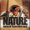 Cover of the album Wild Gremlinz
