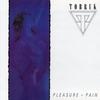 Cover of the album Pleasure & Pain
