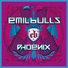 Couverture de l'album Phoenix (Bonus Track Version)