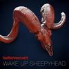 Couverture de l'album Wake Up Sheepyhead