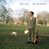 Couverture de l'album Only the Missile