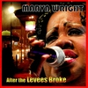 Couverture de l'album After the Levees Broke
