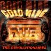 Couverture de l'album Goldmine Dub