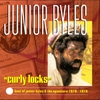 Couverture de l'album Curly Locks