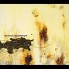 Couverture de l'album The Downward Spiral