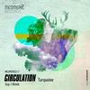 Couverture de l'album Turquoise - The Guy J Remix - Single