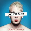 Cover of the album OK, I'M SICK