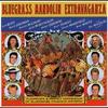 Cover of the album Bluegrass Mandolin Extravaganza