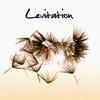 Couverture de l'album Levitation