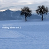 Cover of the album Stereoheaven Pres. Chilling Winter Vol. 2