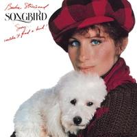 Couverture du titre Songbird