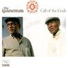 Couverture de l'album Call of the Gods