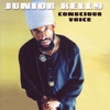Cover of the album Conscious Voice