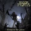 Couverture de l'album Slaves To The Grave